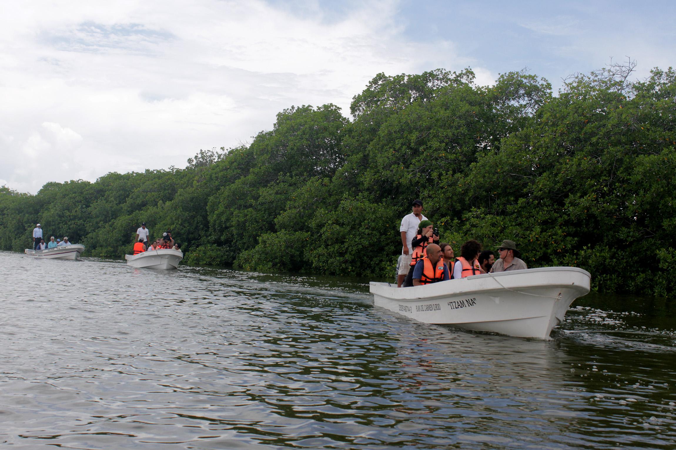 OPINIÓN: COP 13 en Cancún, ¿compromisos alcanzables?